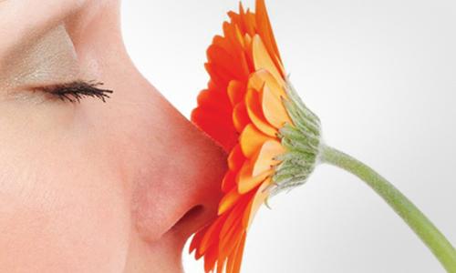 آیا بعد از عمل بینی دچار مشکل بویایی خواهیم شد؟